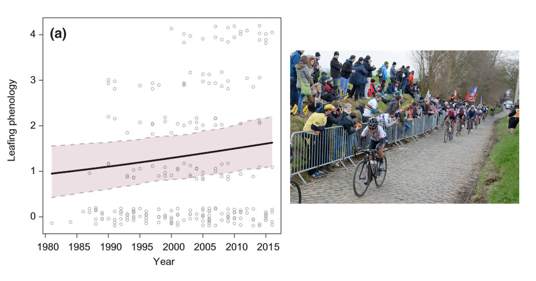Changements phénologiques de la végétation en réponse au changement climatique identifiés par des vidéos d'archives de la course cycliste du Tour des Flandres