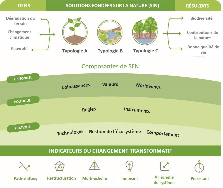 Évaluer les solutions fondées sur la nature pour le changement transformatif
