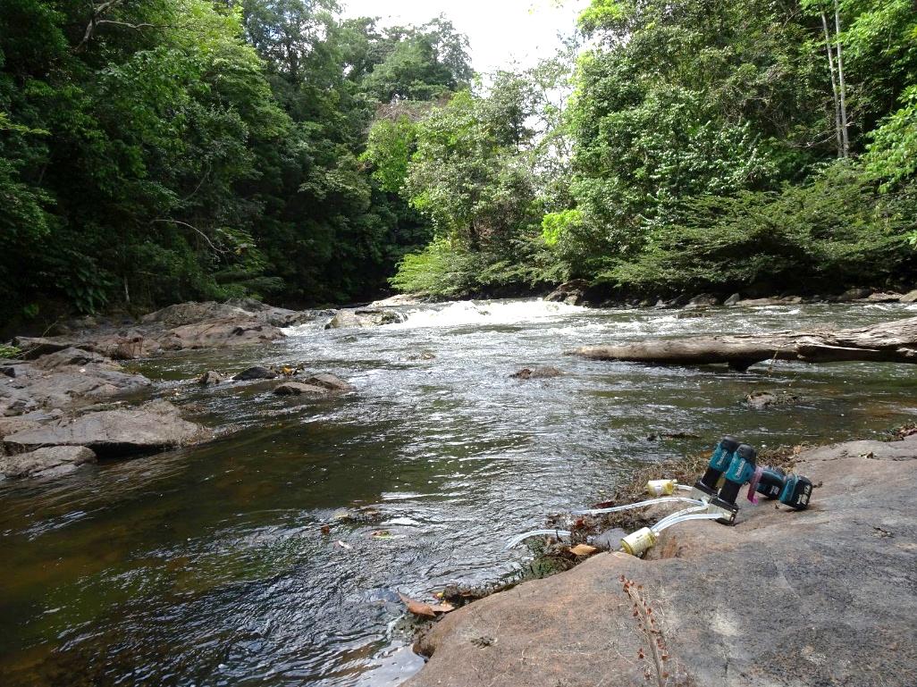 Système de collecte d'ADN environnemental par filtration d'eau au niveau du Saut Parasol, sur la rivière Sinnamary, en zone cœur du Parc Amazonien de Guyane. Il s'agit d'un site exempt de perturbation humaine sur lequel de nombreux mammifères emblématiques ont été détectés.